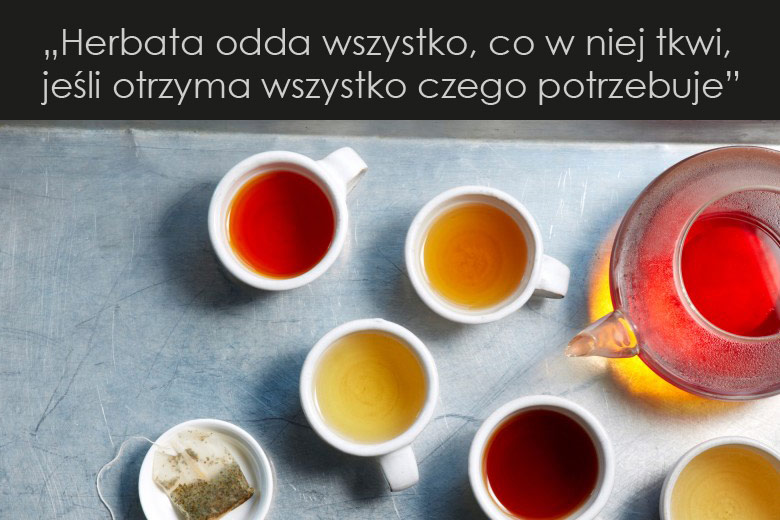 Dobra herbata - jak ją przygotować?