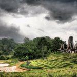 Sulawesi Toraja – kawa z Indonezji
