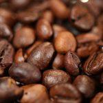 Robusta – niedoceniany gatunek kawy